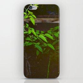 Vibrate iPhone Skin
