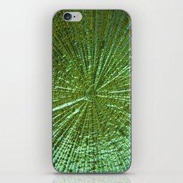 Emerald Ripple iPhone Skin