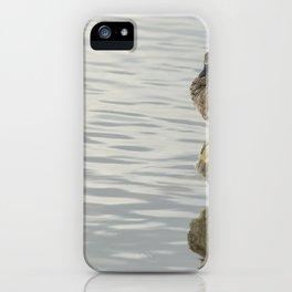 Spring mallard iPhone Case