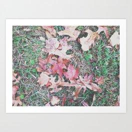 Autumn 7 Art Print