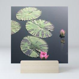 Lily pad Mini Art Print