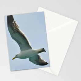 Sky cruiser Stationery Cards