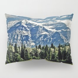 The View of Immense Freedom Pillow Sham