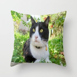 Orazio in the nature Throw Pillow