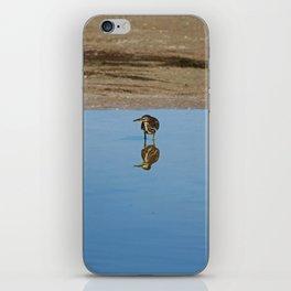 Juvenile Green Heron Reflection iPhone Skin