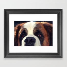 Happiness is My Dog Framed Art Print