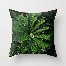 Dew On Rose Scented Geranium Leaves Throw Pillow