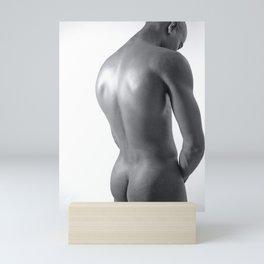 Gleaming Mini Art Print