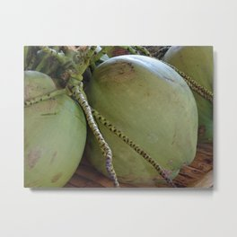 young coconuts in thailand Metal Print