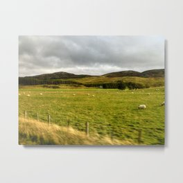 The Land of the Sheep Metal Print