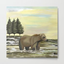 Grizzly bear fishing in the river on a sunny day Metal Print