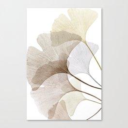 Brown Beige Skeleton Ginkgo Leaf, Modern Minimalist Botanical Photography Canvas Print