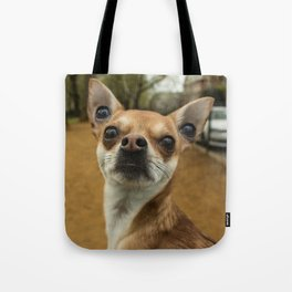Four eyed Chihuahua?! Tote Bag