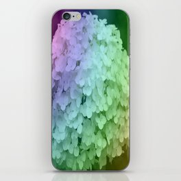 Rainbow Hydrangea iPhone Skin