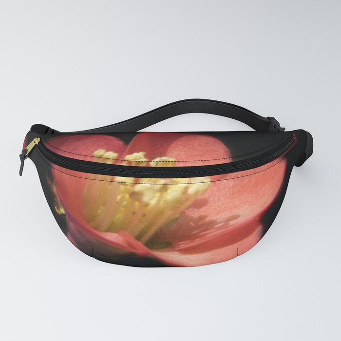 flowers of spring on black -14- Fanny Pack