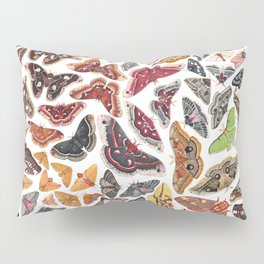 Saturniid Moths of North America Pattern Pillow Sham