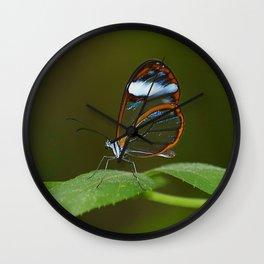 Glasswing Butterfly Wall Clock