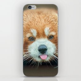 PANDA-RING TO ONE'S TASTE iPhone Skin