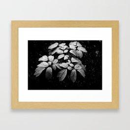 Monochrome Droplet Framed Art Print