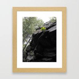 Waaaaay up there Framed Art Print