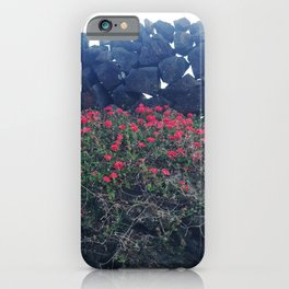 Jeju Island's stone walls and  full blooming wild flowers. iPhone Case