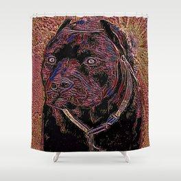 Pit Bull Models: Khan 02-05 Shower Curtain
