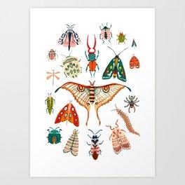 Beetles of the World Art Print