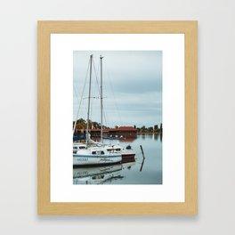 Seagulls on boat at Lake Palic, Serbia / Blue / Dawn Framed Art Print