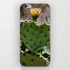 Sonoran Love iPhone & iPod Skin