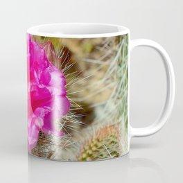 Hedgehog Cactus In Bloom Coffee Mug