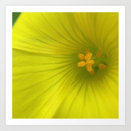 Chartreuse Swirl Art Print