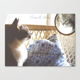 Kitty W Canvas Print
