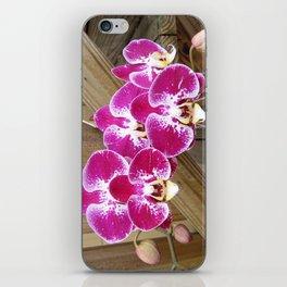 PURPLE ORCHIDS iPhone Skin