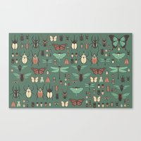 insects Canvas Prints featuring Insects by Kiana