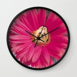 Little pistil Wall Clock