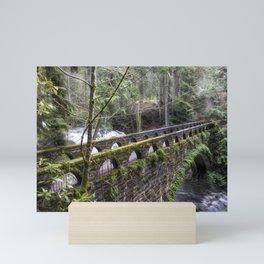 Bridge Over Troubled Waters Mini Art Print
