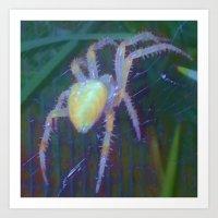 Violet Web Art Print