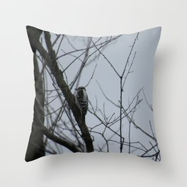 This beautiful little Downy Woodpecker Throw Pillow