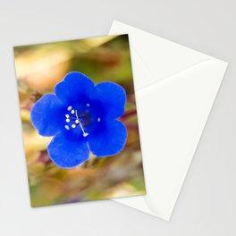 Desert Bluebell Alternate Perspective Stationery Cards