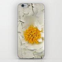 phoenix iPhone & iPod Skins featuring Phoenix by KunstFabrik_StaticMovement Manu Jobst