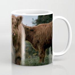 Scottish Highland Cattle Calves - Babies playing II Coffee Mug