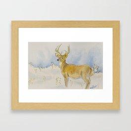 Winter Whitetail Framed Art Print