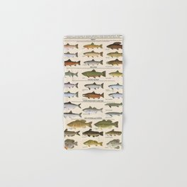 Illustrated Western Game Fish Identification Chart Hand & Bath Towel