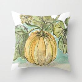 Antique Botanical Sketch Pumpkin Throw Pillow