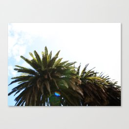 Dreamin' of Malibu. Canvas Print