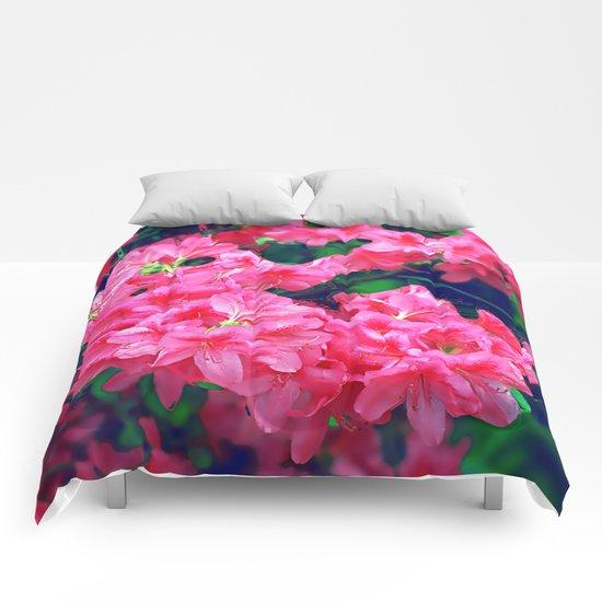 Pink azalea blooms. Comforters