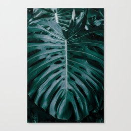 monstera ultramarine Canvas Print