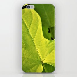 Golden Green Oak Leaves iPhone Skin