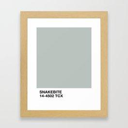 snakebite Framed Art Print