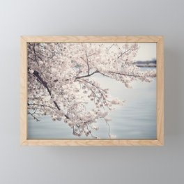 Cherry Blossoms of DC Edition 1 Photography Print Framed Mini Art Print